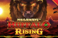 Buffalo Rising Megaways Video Slot
