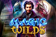 Magic Wilds Video Slot