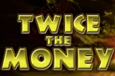 Twice the Gold Video Slot