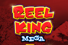 Reel King Mega Video Slot