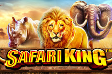 Safari King  Video Slot