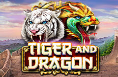 Tiger and Dragon Video Slot