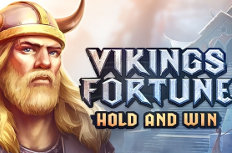 Vikings Fortune: Hold and Win Video Slot