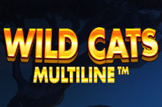 Wild Cats Multiline Video Slot